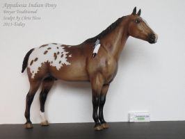 Collection Images: Indian Appaloosa by Breyer by CarolaFunder