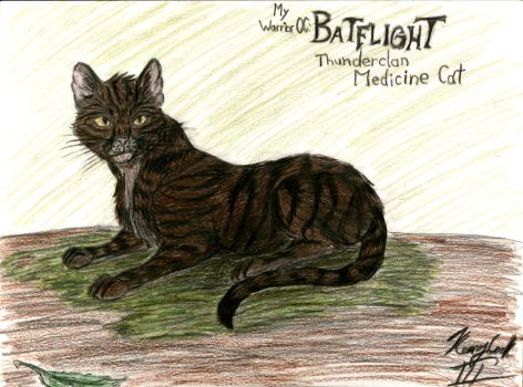 My Warrior Cat OC: Batflight by Taqresu650