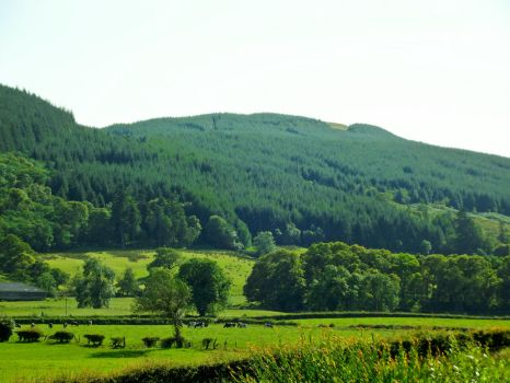 Loch Lomand hills 3 by Johnt447
