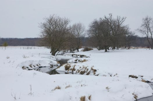 Winter Landscape 1 by Astralsteed