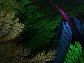 Feathers1 by fractal2cry