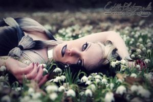 Field of flowers by Estelle-Photographie