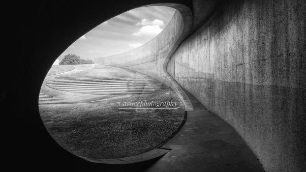 Curves by CarlierPhotography