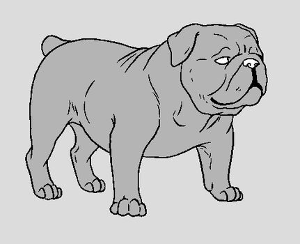 Dog Template - English Bulldog by NaruFreak123-Bases