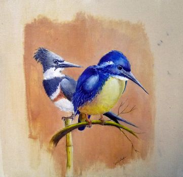 Kingfishers 01 by Goodnight-Melbourne