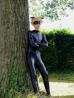 Chat Noir by DeadPhantoms