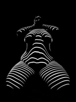 1422-TND Big Beautiful Zebra Woman BW Art Nude by artonline