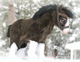 Storm the Baby Clydesdale by RikerCreatures