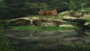 Dogs on one pond by BrotherGuy