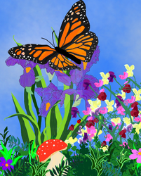 Monarch Butterfly- Illustration for Ms. Hairry by EllieLieberman