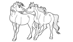 Horse couple Lineart PNG by kokamo77