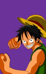 Luffy stance by ID9OP