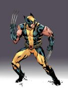 wolverine by celor
