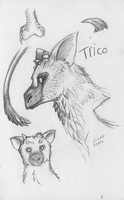 Trico Sketches by xenomorphfury161