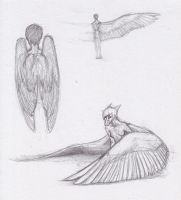 Have some sketches by Mayka94