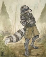 TK Anthro Raccoon - Commision by Valhalrion