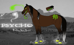 CSS Psycho by CollidingStarsStable