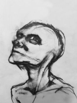 Anatomy and expression study by ProfessorPicasso