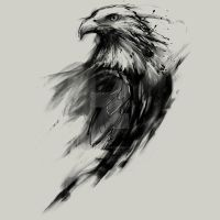 Eagle Eye by Design-By-Humans