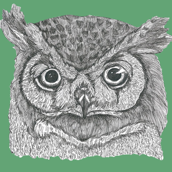 Owl face in green by Malice-InWonderland