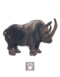 Coelodonta antiquitatis (Woolly Rhinoceros) by 0CoffeeBlack0