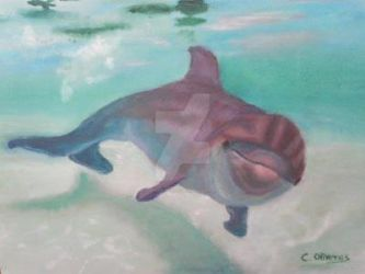 Bottle Nose Dolphin oil painting close-up by Cristy-spain
