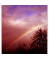 _Blinded by rainbows by accessQ