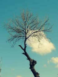 Hanging Clouds by c2fahad