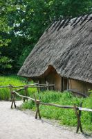 Prehistoric house outside by Dewfooter