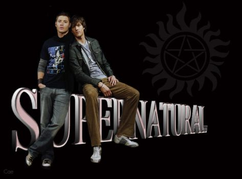 Sam and Dean Banner by Caes-Doodles