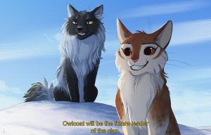 The announcement by OwlCoat
