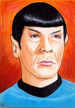 Mr. Spock 05 by twoshirts