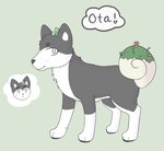 shellpup OTA (closed) by ghosteaa