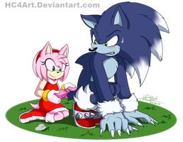 Sonic And Amy by HC4Art