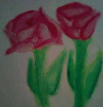 Pink Roses by Luxuria2600