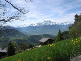 Dents Du Midi from Leysin in spring by Lucysthings