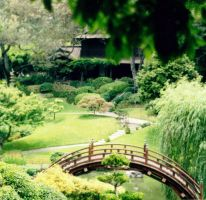 Japanese Garden by Avalonis