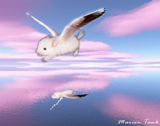 Floating on pink Clouds by Villa-Chinchilla