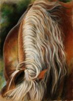Horse in details: The Mane. by KateVigdis