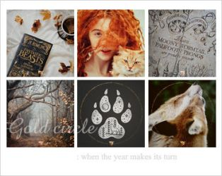 Gold Circle : icon set by Keila-the-fawncat