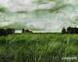 It's An Old Landscape. by PhysicalMagic
