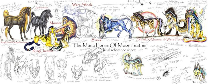 MoonFeather Reference page by moonfeather