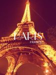 Imagen Love in paris by Dianeyeditions