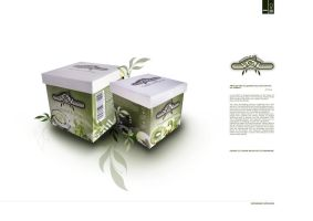 revised packaging 1 by GerCasey