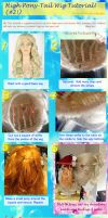 High Pony Tail Wig Tutorial by breathelifeindeeply