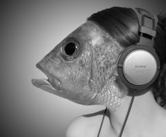 Fish Face Five BW by JackieCrossley