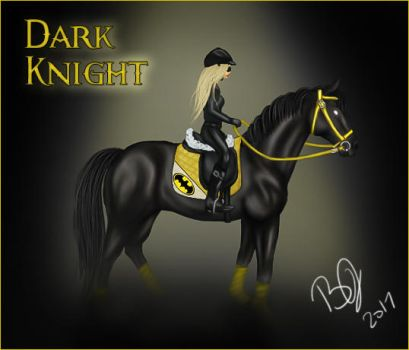SSO Dark Knight by VIP-EquineArt