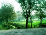 Classic Natural Scenery by rameexgfx