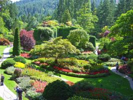 Butchart-Gardens3 by Trisaw1