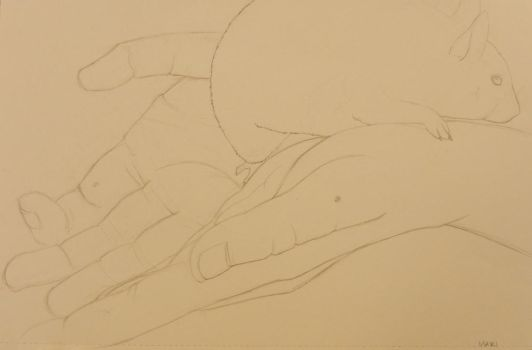 Hands study6 by Takarti